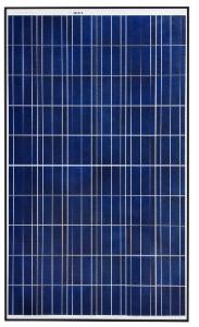 REC 255 PE solar modules; 250 watts
